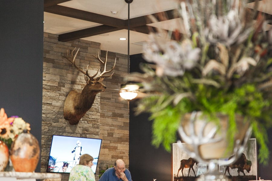 Decorative deer head in lobby of assisted living facility.
